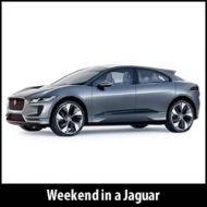 jaguar-day